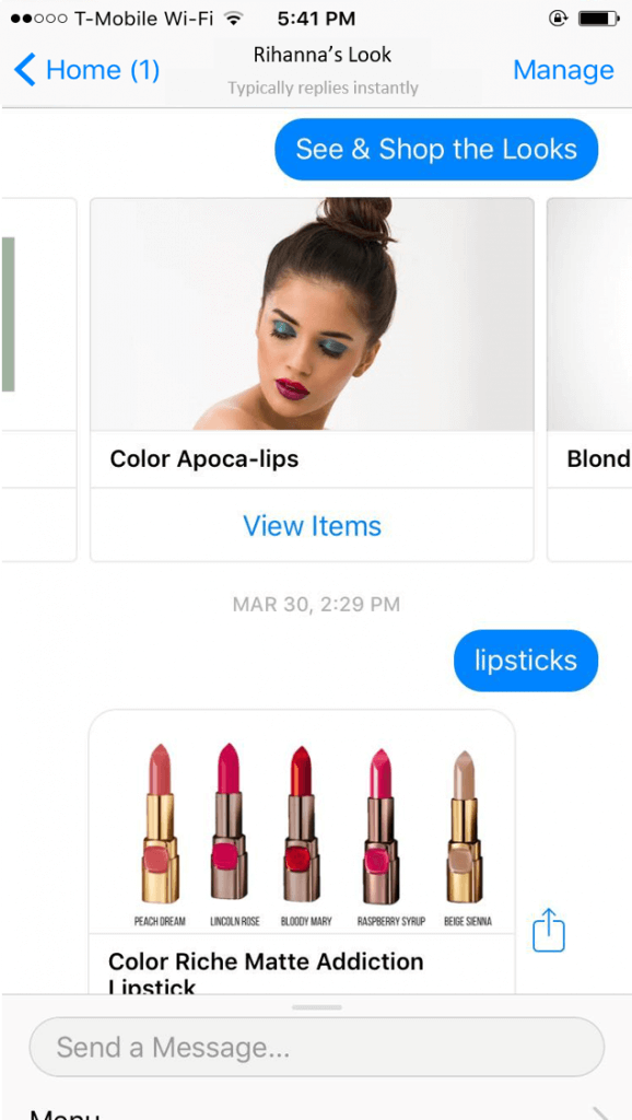 Shop the look ecommerce makeup chatbot